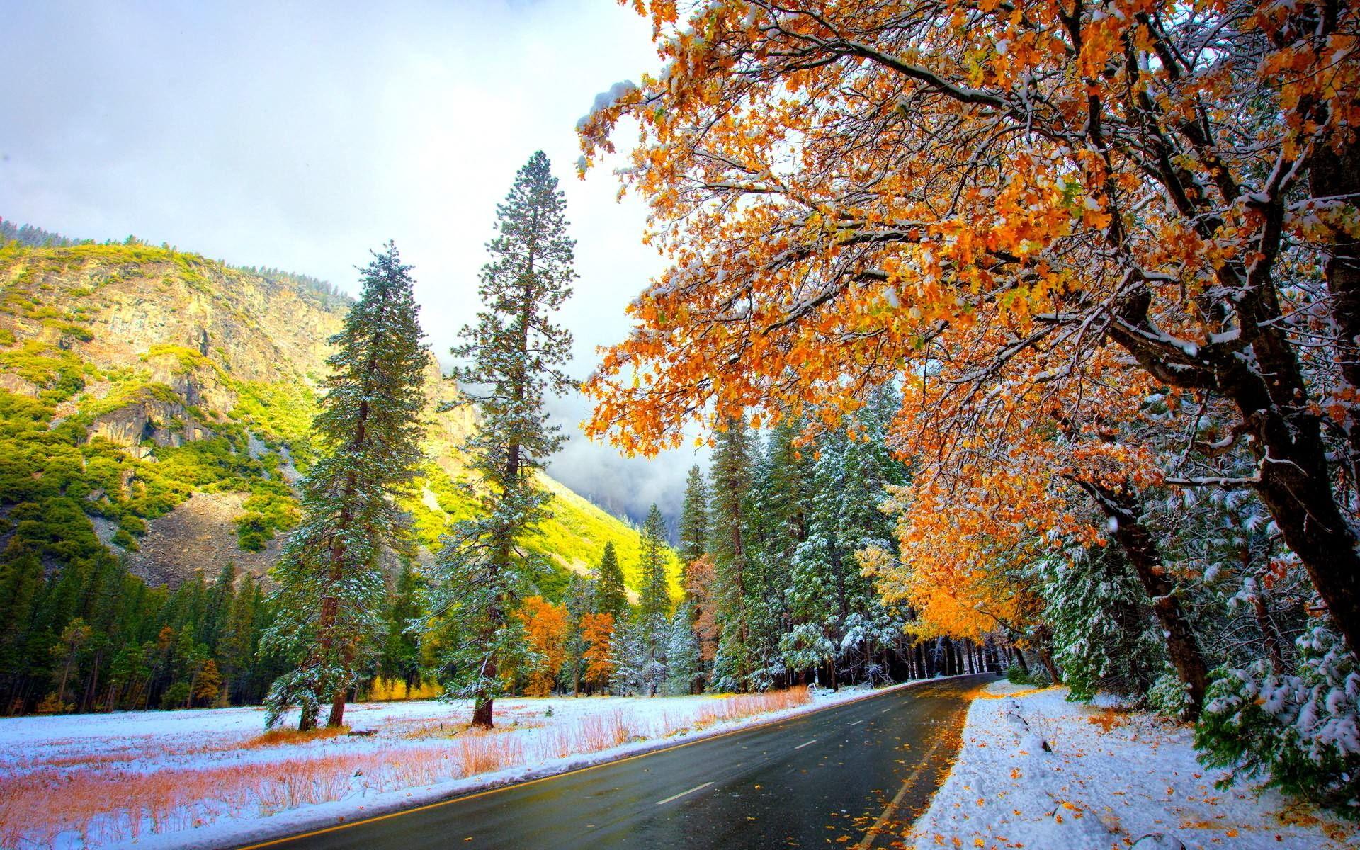 Снег осенью в картинках