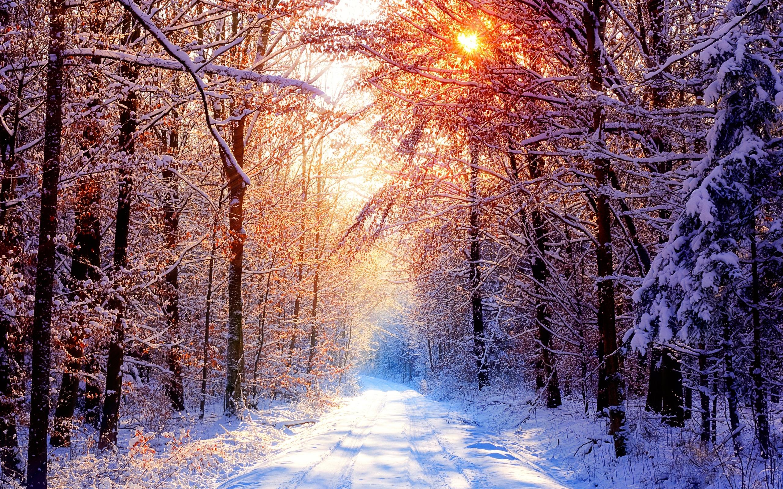 вопросам самые красивые картинки про зиму санатория