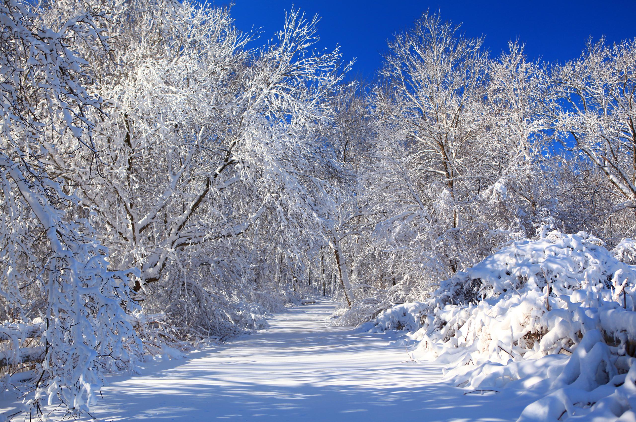 живые картинки на рабочий про зиму привычка