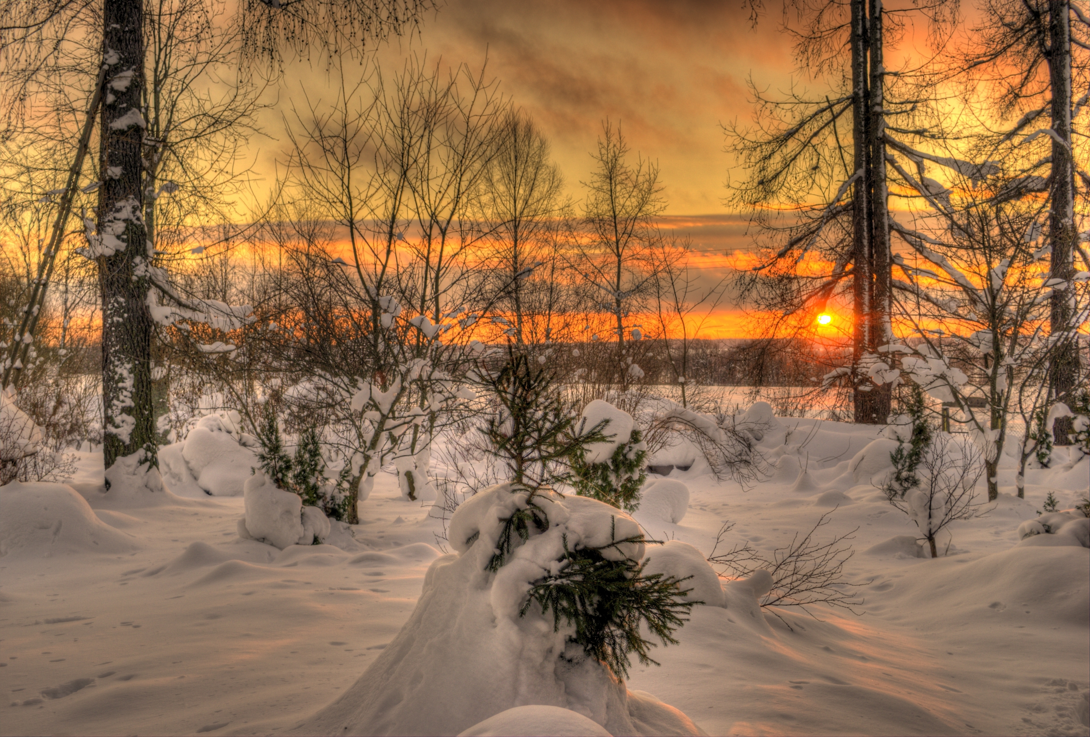 приморцев природа фотографии зимних пейзажей ему общем-то