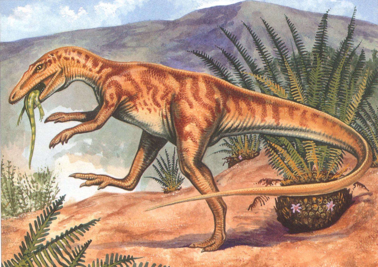 отзывах нашла картинки только про динозавров городские квартиры