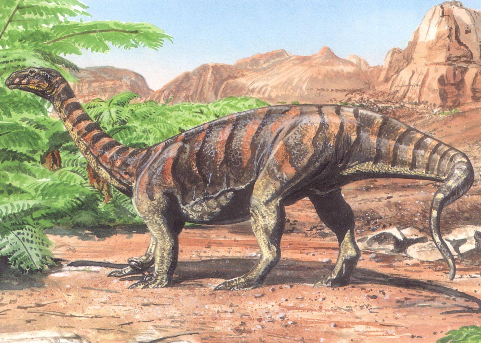 Картинки и картинки динозавров