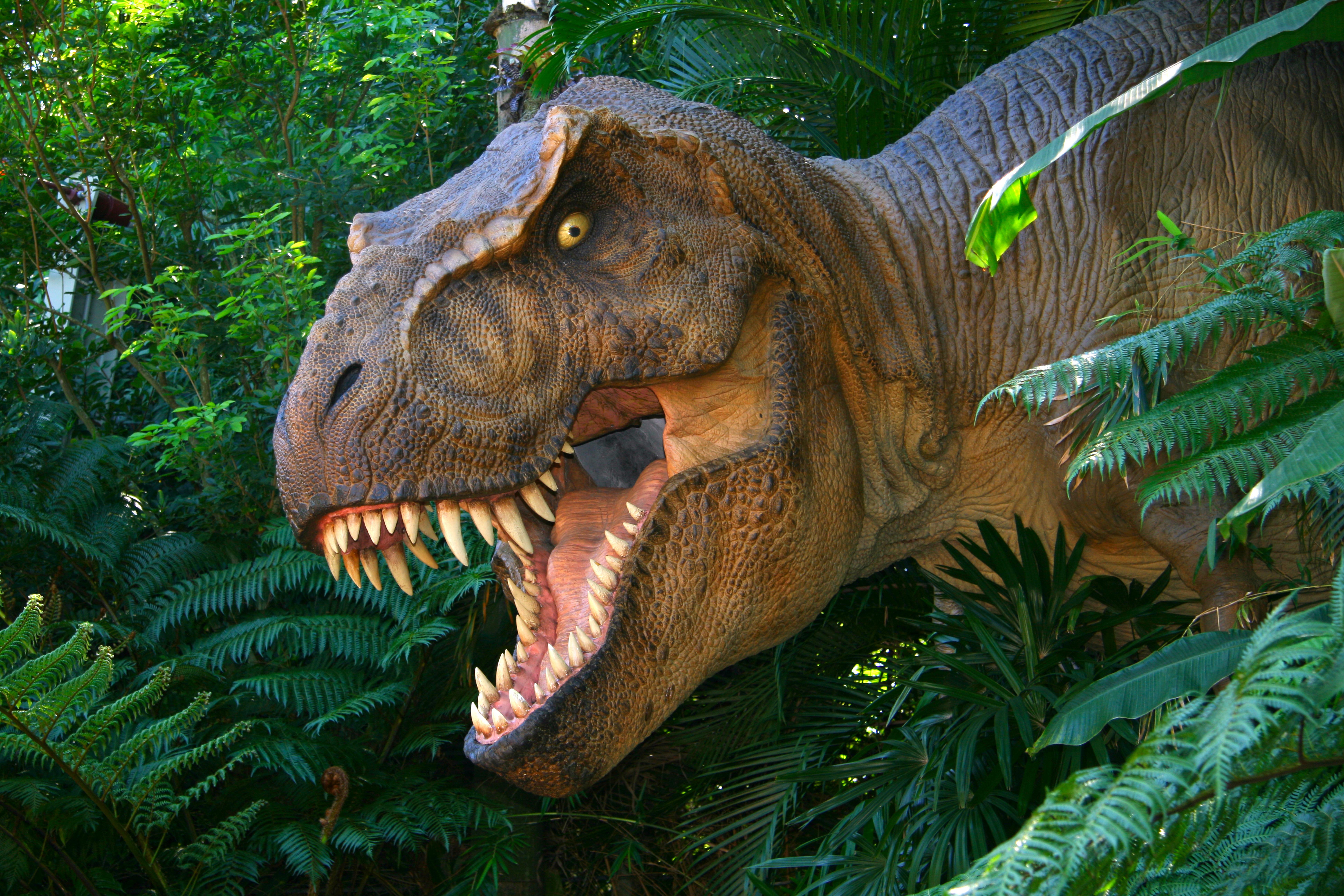 посмотреть все картинки динозавров рамках этого