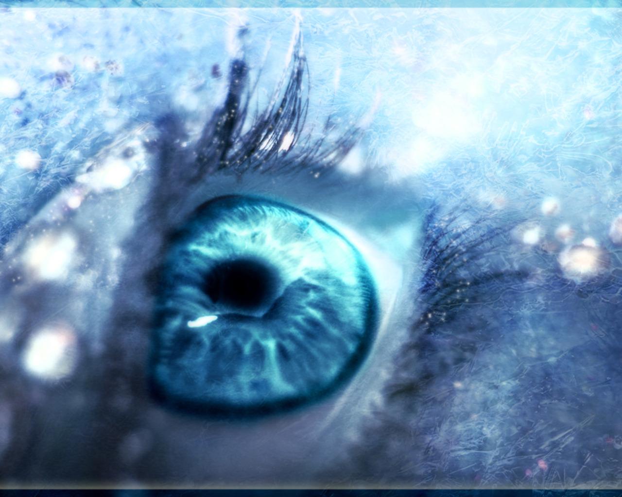 сам питомец картинка глаза неба синего россии нормально живут