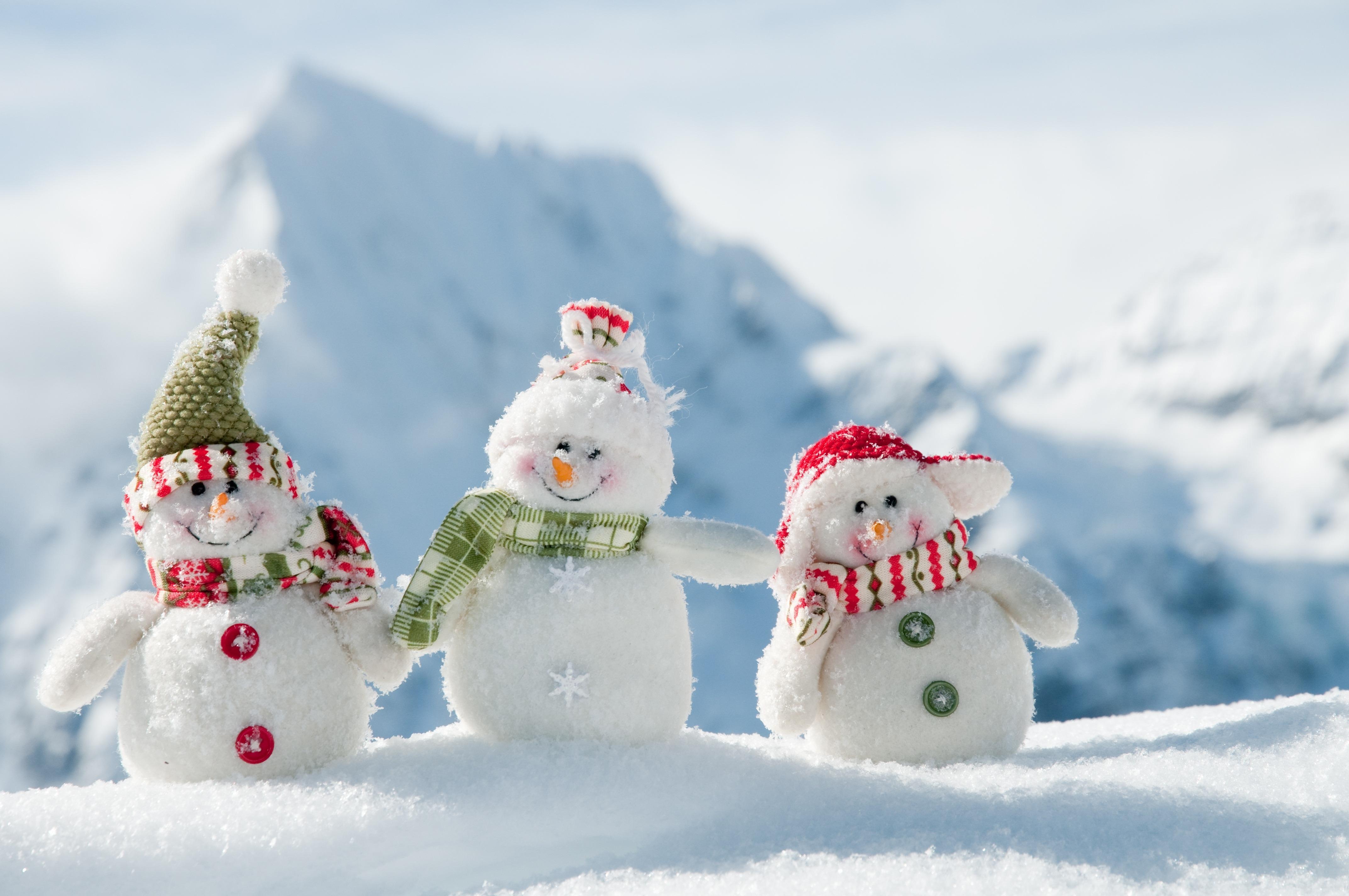 применение красивые картинки про новый год и зиму команда
