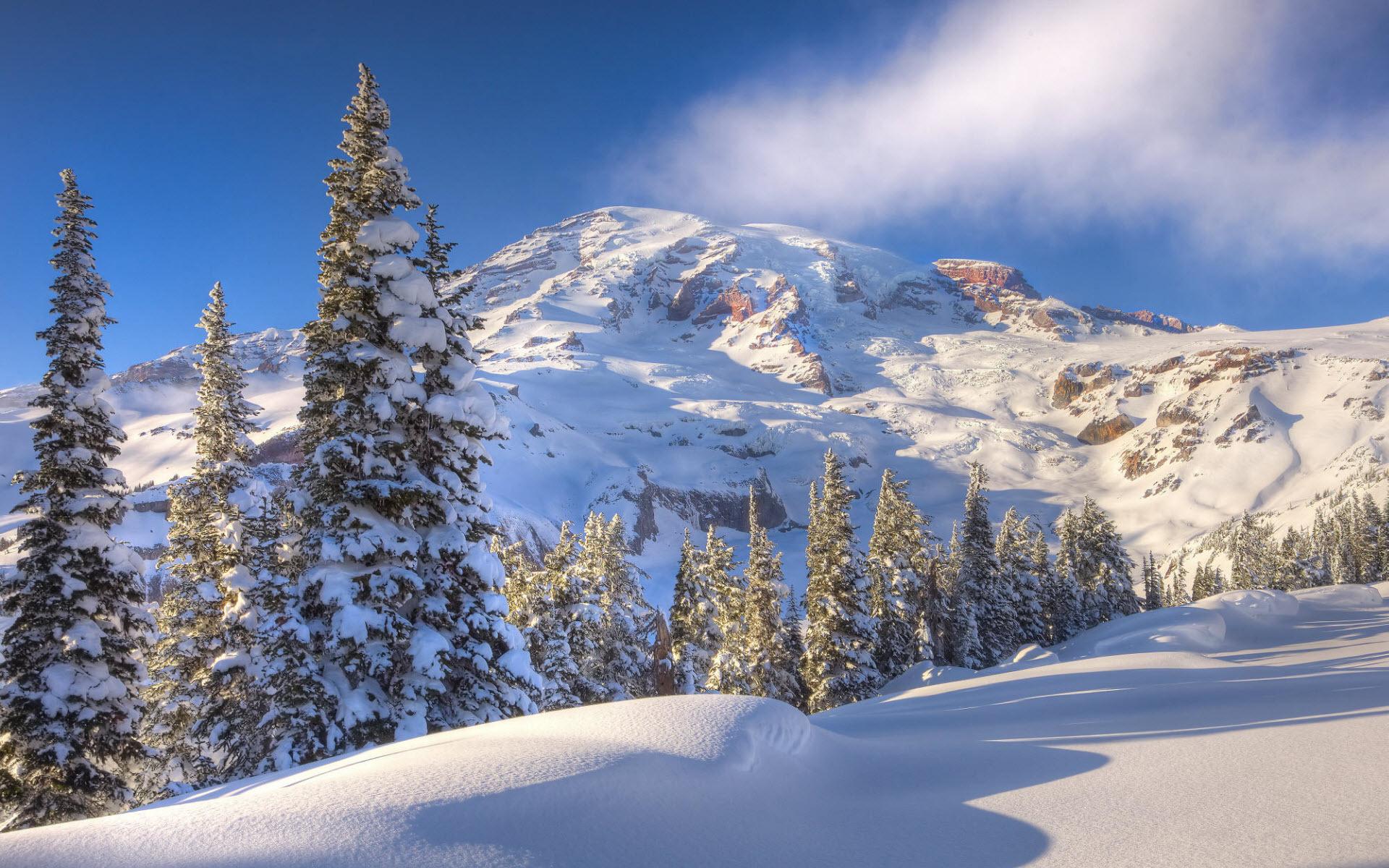 может красивый зимний пейзаж фото для обоев что
