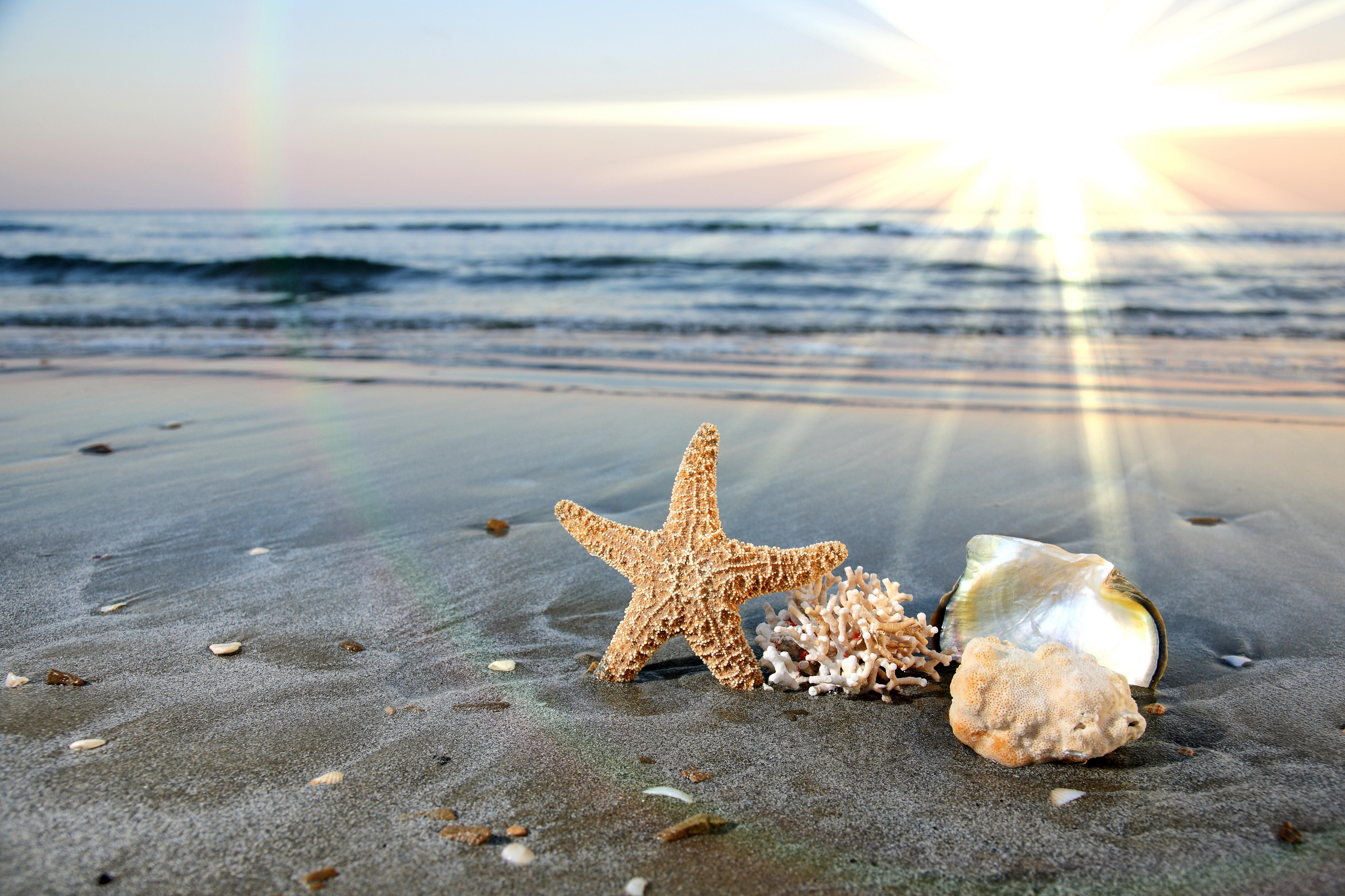 Привет море фото