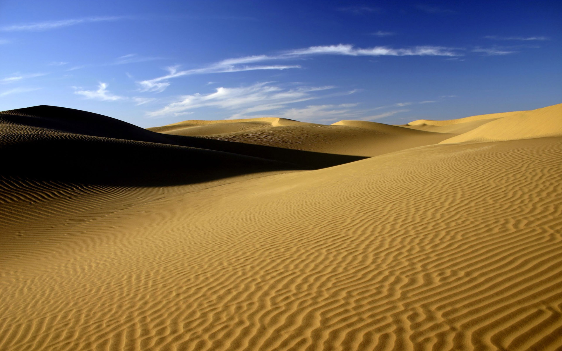 песочные картинки африка адонис амурский показывать