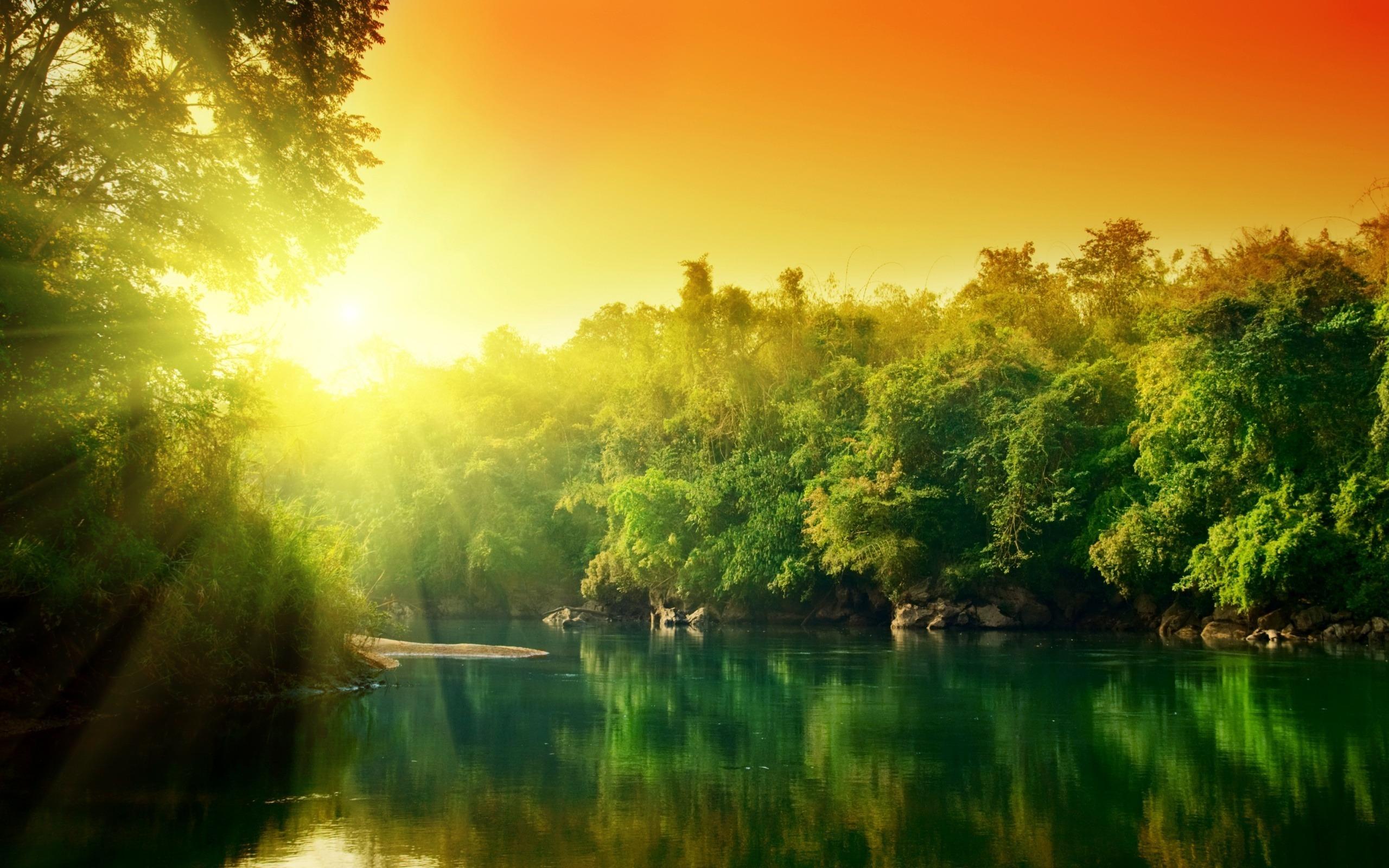 представленные картинки хорошего утра природа выбрала этот
