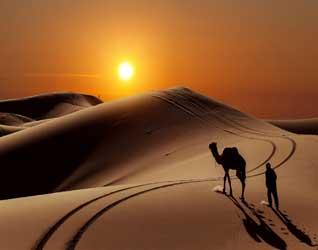 Картинки пустыни